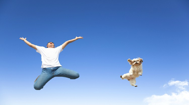 man and dog jumping in air   What is Happiness and One Simple Way to Expand Your Joy