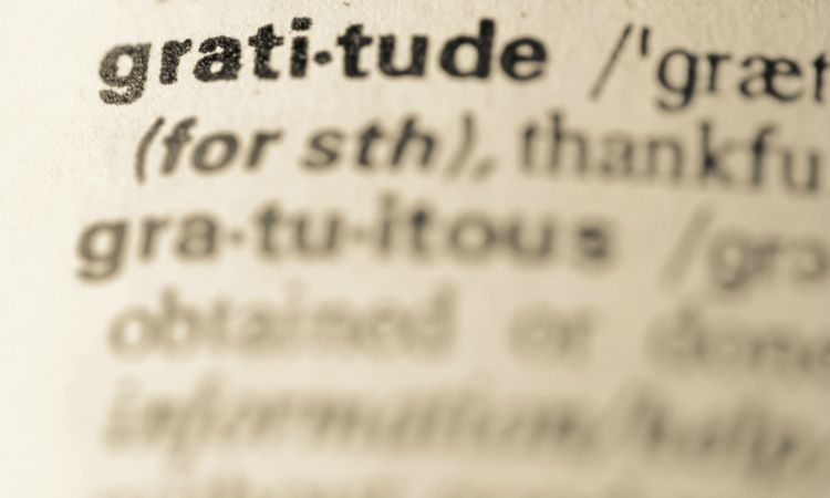 gratitude in the dictionary with words blurred out | How to Practice Gratitude With Us This November  https://positiveroutines.com/practice-gratitude/