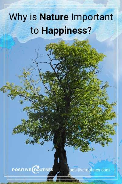 Why is Nature Important to Happiness | https://positiveroutines.com/why-is-nature-important-happiness/