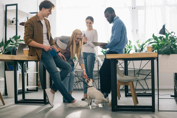 workgroup with dog in office | A Surprising Way to Ease Workplace Stress  https://positiveroutines.com/workplace-stress-tip/